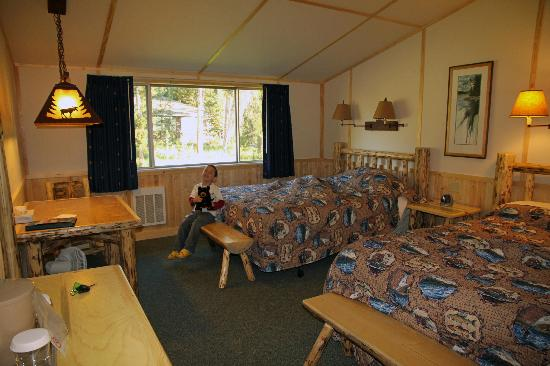 Lake Lodge Cabins  Prices  Reviews Yellowstone National