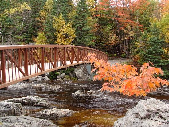 2019 Best Of Corner Brook Canada Tourism Tripadvisor