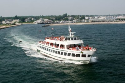 Island Queen Ferry (Falmouth, MA): Address, Phone Number ...