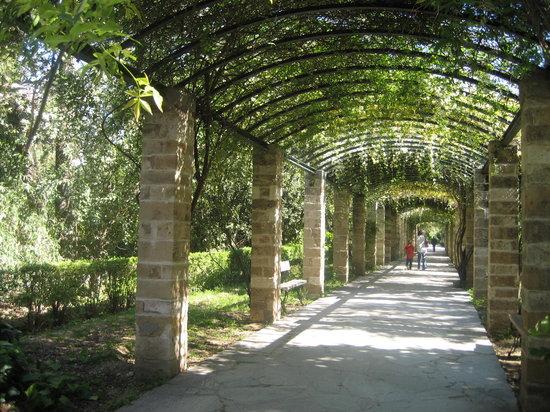 National Garden Athens Greece Top Tips Before You Go  TripAdvisor