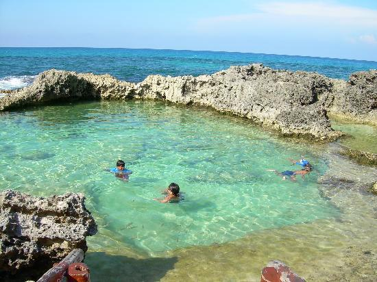 Snorkeling At Kings Bath Picture Of Mia Reef Isla