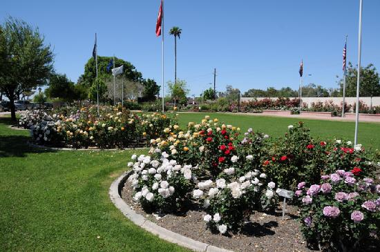 Rose Garden at Mesa Community College  Mesa  Reviews of