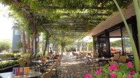 La Pergola, Santa Susanna - Avenida del Mar 6 - Restaurant ...