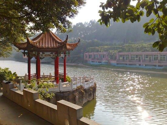 The Top 10 Things to Do Near Royal Garden Hotel, Dongguan