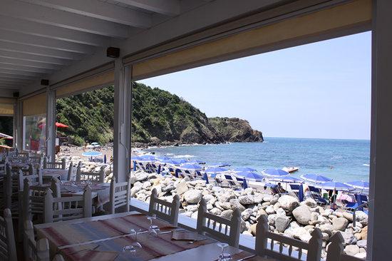 The 10 Best Restaurants Near Baratti Beach Populonia