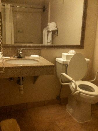 bathroom in handicap accessible room Sink counterspace is