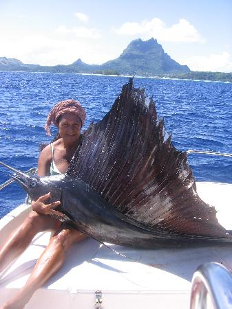 BORA BORA FISHING PARADISE LODGE BB Polinesia francese Prezzi 2018 e recensioni