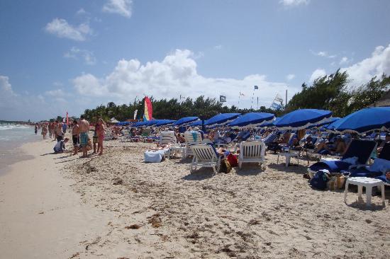 beach rendezvous excursion picture
