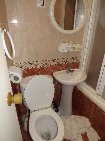Mini bagno  Foto de Hostal INTER Plaza Mayor Madri