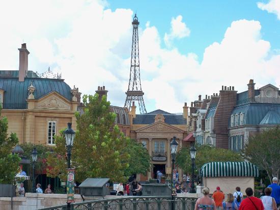 Walt Disney World Honeymoon Reviews