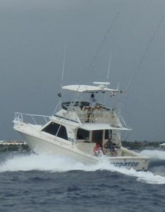 All photos also mike   marina fishing charters srl punta cana you need rh tripadvisor