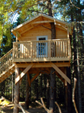 MIRAMICHI TREEHOUSE Amp CAMPING ADVENTURES Campground