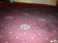 Thick layer of dust on carpet under bed - Picture of ...