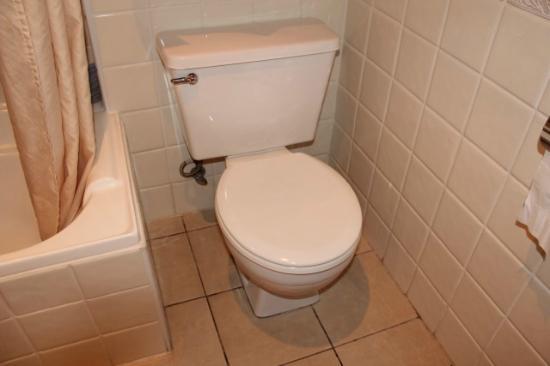 Old Toilet  Weak Flush