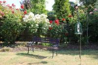 Garden - Photo de Rose Corner, Impington - TripAdvisor
