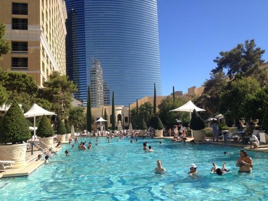 la piscina  Picture of Bellagio Las Vegas Las Vegas  TripAdvisor