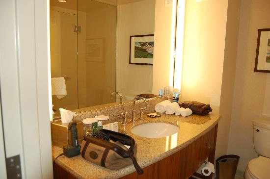 Bathroom Sink  Picture of Hilton San Diego Bayfront San Diego  TripAdvisor