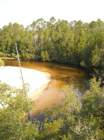 Coldwater Creek Pensacola