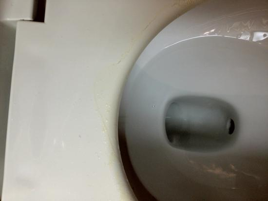 urine stains on toilet - Picture of Quality Inn Lexington ...