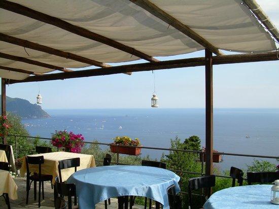 Ristorante Golfo Paradiso Pieve Ligure  Ristorante Recensioni Numero di Telefono  Foto