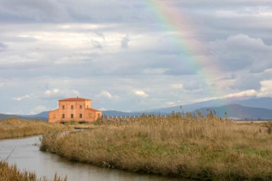 Casa Rossa Ximenes Castiglione Della Pescaia  All You Need to Know Before You Go with Photos