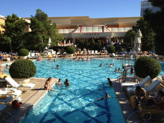 Piscina Wynn  Foto de Wynn Las Vegas Las Vegas  TripAdvisor
