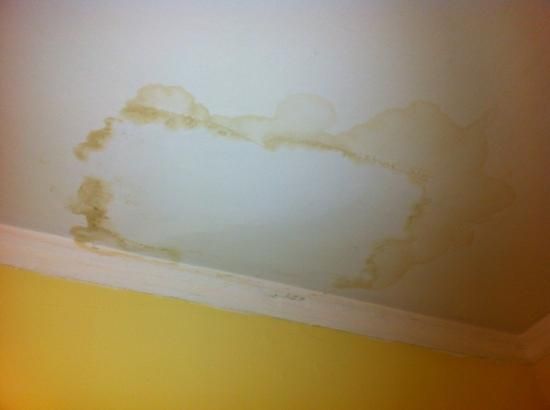 how to get rid of rising damp smell