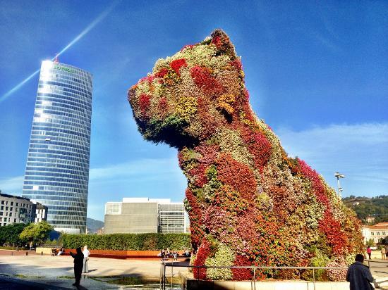 Jeff Koons Puppy Picture Of Guggenheim Museum Bilbao