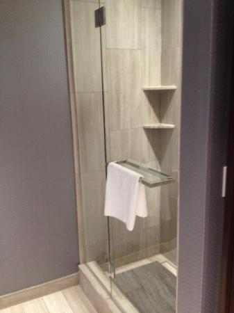 stand up shower in addition to large tub  Picture of Ivy Boutique Hotel Chicago  TripAdvisor
