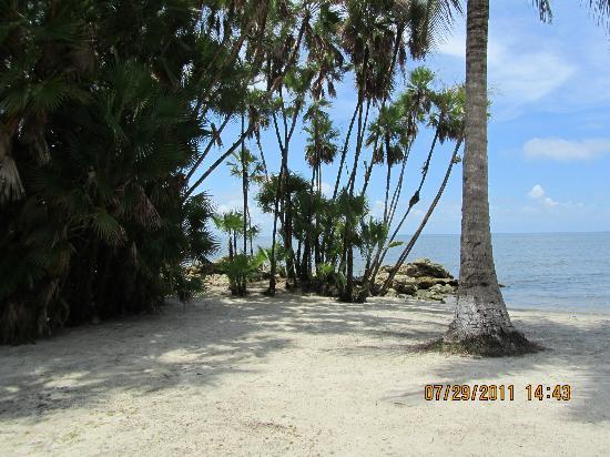 Foto de Livingston Rio Dulce Playa Blanca Guatemala  TripAdvisor
