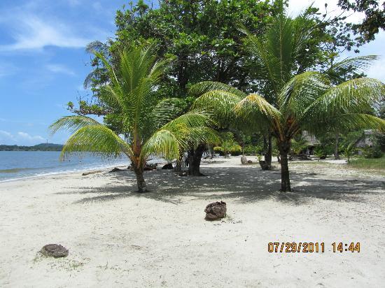 Playa Blanca Izabal  fotografa de Livingston Rio Dulce  TripAdvisor