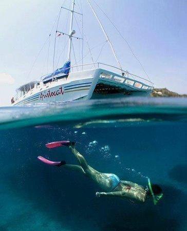 Arti Snorkeling : snorkeling, Fvghjkl, Lessons, Blendspace