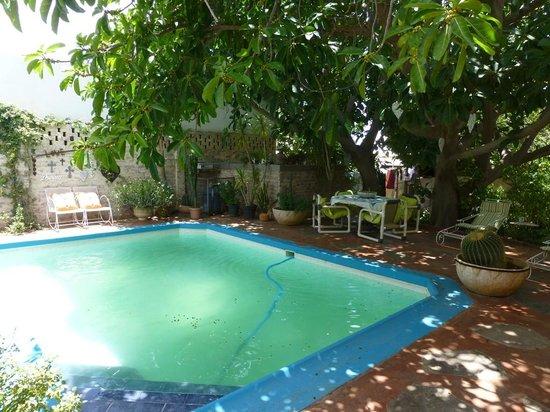 Pension Gessert Pool Im Garten