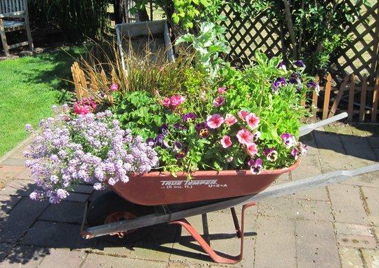 Wheelbarrow Full Of Flowers Picture Of Farmhouse Bed Amp Breakfast Clinton TripAdvisor