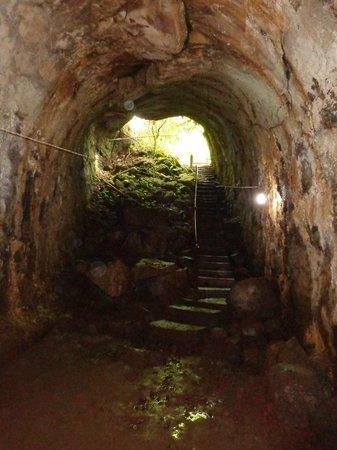 Lava Tunnel Santa Cruz  2019 All You Need to Know