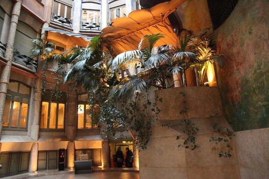 tico  Bild von Haus Mil Casa Mil Barcelona