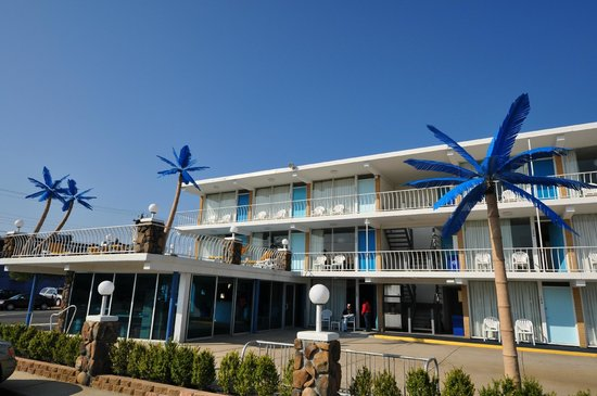 Blue Palms Updated 2019 Prices Amp Motel Reviews Wildwood