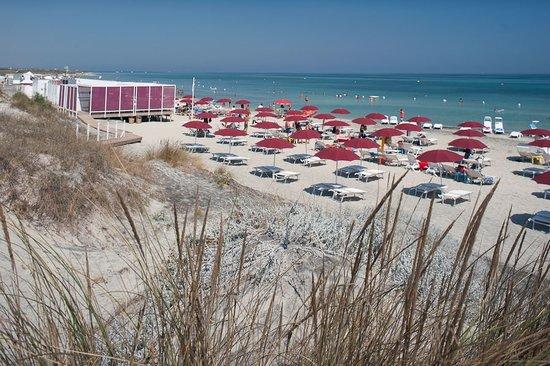 Ultima Spiaggia delle Cesine Vernole Aggiornato 2018  tutto quello che c da sapere