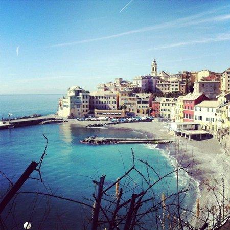 Ristorante Il Bistrotto in Genova con cucina Cucina ligure