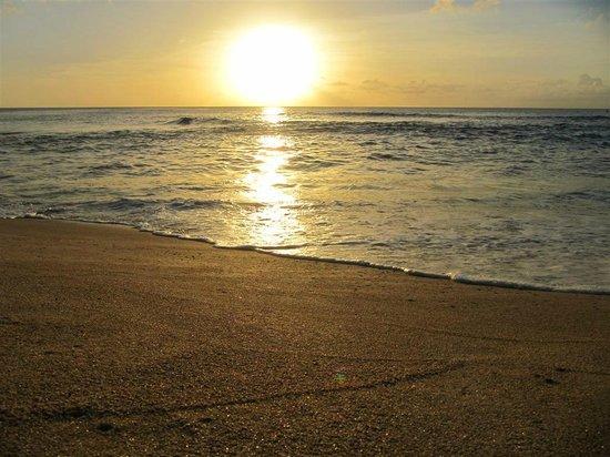 sunset beach  Foto di Sunset Beach Park Haleiwa  TripAdvisor