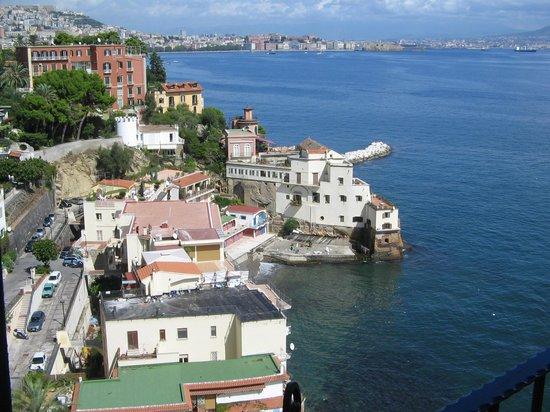 pasta allo scoglio  Foto di Reginella Napoli  TripAdvisor
