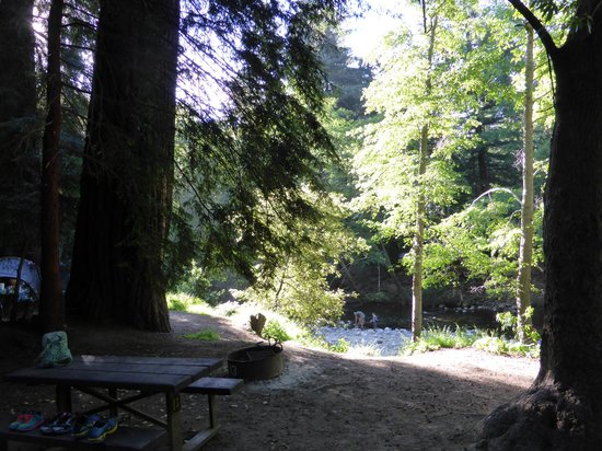 view form site to river  Picture of Big Sur Campground