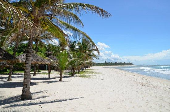 Strand Richtung Kongo River (68512363)