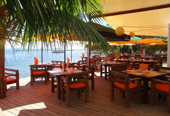Moorea Beach Cafe Maharepa  Restaurant Avis Numro de Tlphone  Photos  TripAdvisor
