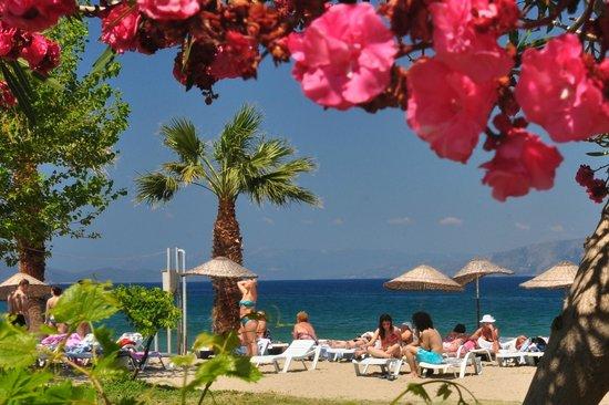 Plaza Picture Of Hotel Akbulut Spa Guzelcamli Tripadvisor