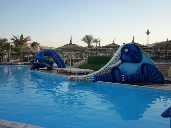 piscina  Picture of Royal Albatros Moderna Nabq Bay  TripAdvisor