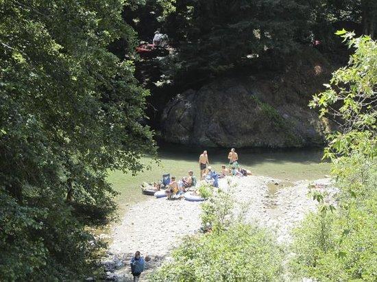 Big Sur Campground  Cabins CA  Campground Reviews