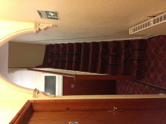 Scheve trap met mufstinkend tapijt ruikt in de hal naar
