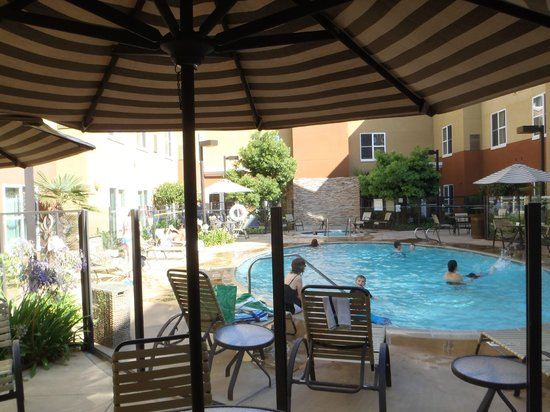 Mystery Italian Free Dinner Picture Of Homewood Suites