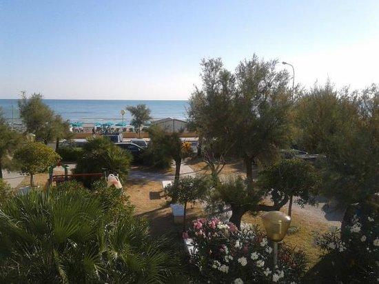 la spiaggia e il mare difronte allhotel  Foto di Hotel Nettuno Senigallia Senigallia